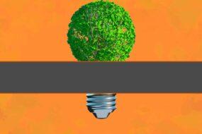 Sustentabilidad y Mercadotecnia