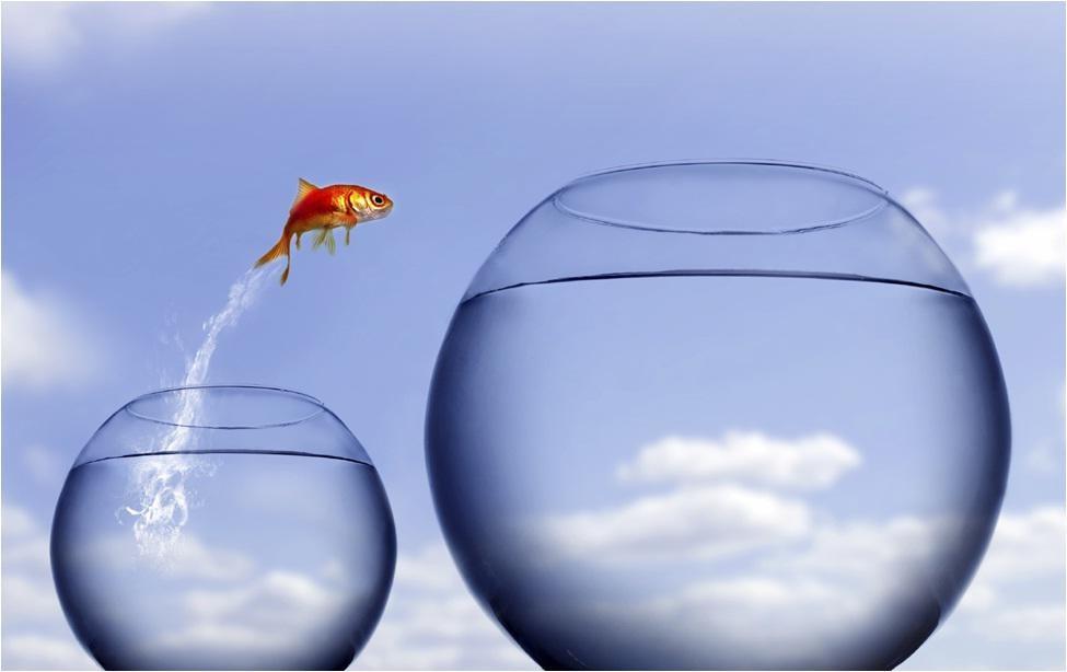 5 tácticas para liderar la gestión del cambio