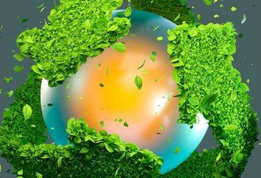 Marcas Sustentables: más allá de la causa ambiental